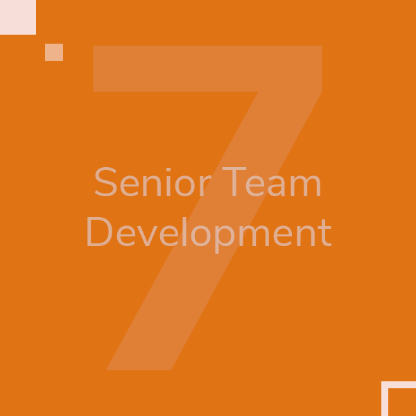 senior-team-development