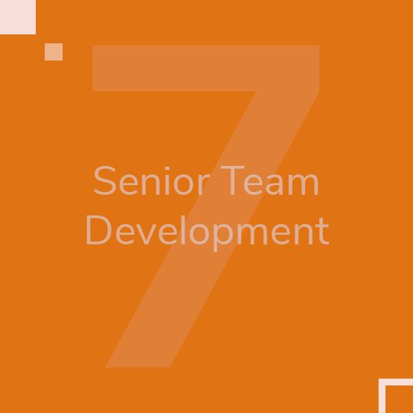 senior-team-development